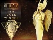 Award visual