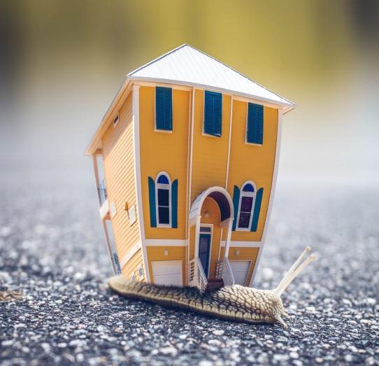 Tiny Homes Impact