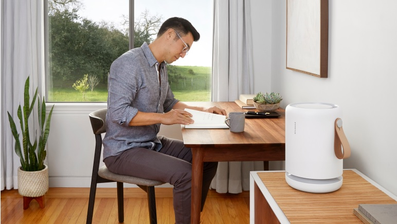 Purifying the Air In Your Home